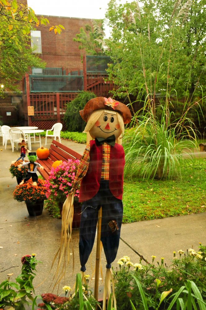 Brrr...Welcome Fall!